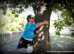 Passeggiata per cercatori d'alberi