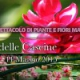 Arenzano a FloraFirenze