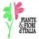 L'Associazione Piante e fiori d'Italia