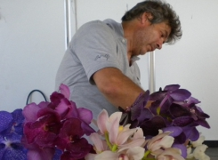 Le orchidee di Andrea Fazio