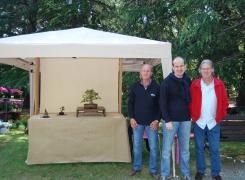 Bonsai e Suiseki a FlorArte