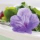 Menù fioriti per FlorArte
