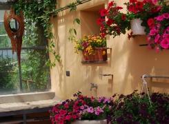 FlorLiguria ad Arenzano