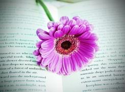 Letture fiorite